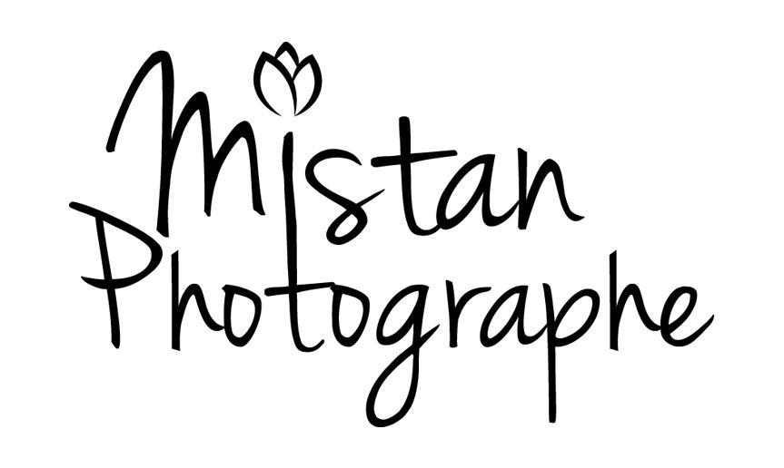 Mistan_logo